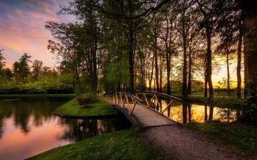 trees, nature, the bridge, sunset, landscape, track, pond, netherlands, holland