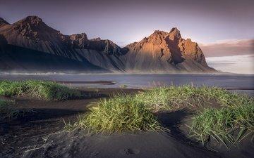 трава, горы, море, побережье, даль, исландия