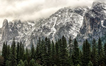 clouds, mountains, forest, usa, yosemite national park, california