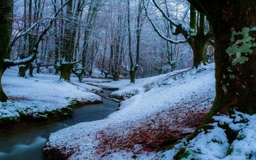 river, snow, nature, forest, winter, stream