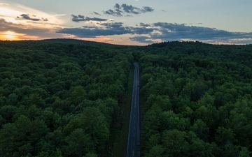 road, forest, sunset, horizon, the view from the top