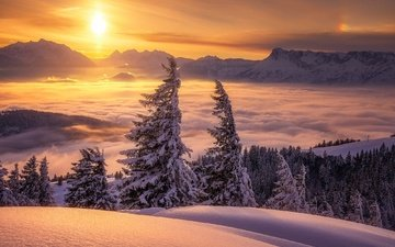 clouds, trees, mountains, snow, sunset, winter, austria, ate, alps