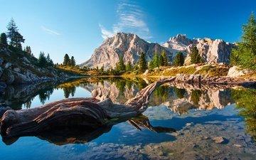 lake, mountains, reflection, snag