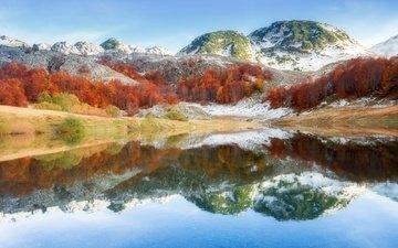 trees, lake, mountains, nature, forest, reflection, mountain, bosnia