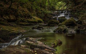 река, природа, камни, водопад, мох