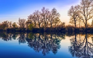 the sky, trees, lake, nature, reflection