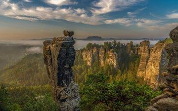clouds, trees, mountains, rocks, morning, fog, germany, saxon switzerland