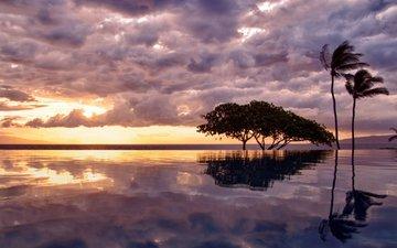 the sky, clouds, trees, lake, nature, sunset, horizon