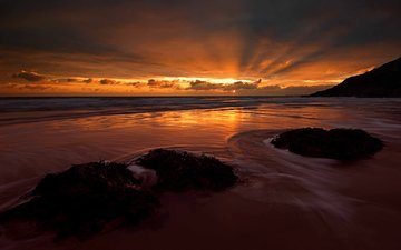 sunset, beach, the ocean