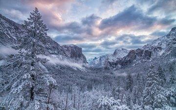 trees, mountains, forest, winter, valley, ca, yosemite national park, sierra nevada, california, yosemite valley
