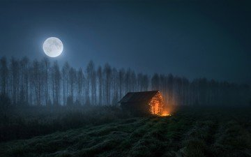 night, trees, the moon, fire, house