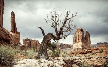 rocks, nature, landscape, desert, usa, utah