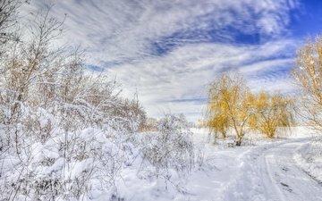 road, trees, snow, winter, landscape