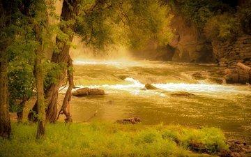 трава, деревья, река, скалы, природа, берег, лес