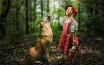 лес, ситуация, девочка, волк, встреча, красная шапочка