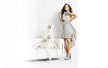 девушка, поза, брюнетка, взгляд, модель, лицо, собаки, длинные волосы, зои салдана, высокие каблуки, richard phibbs), richard phibbs