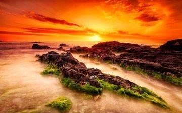 the sky, clouds, the sun, stones, sunset, landscape, sea, fog, horizon, algae