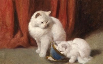 figure, picture, animals, cat, cats, white, arthur heyer