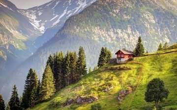mountains, forest, switzerland, house, alps
