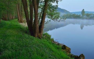 небо, трава, деревья, река, скалы, природа, растения, пейзаж, утро, туман, германия, бавария