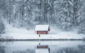 trees, lake, snow, nature, forest, winter, reflection, ice, house