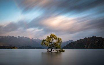 clouds, trees, water, mountains, nature, new zealand, otago, wanaka