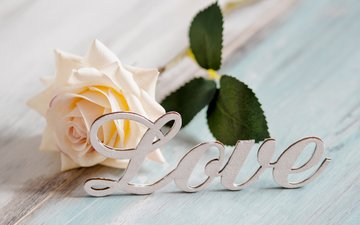 роза, любовь, текст, kriscole