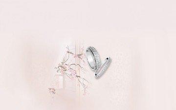 розовый, нежность, кольца, свадьба