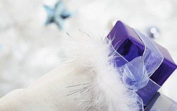 размытость, перья, лента, подарок, праздник
