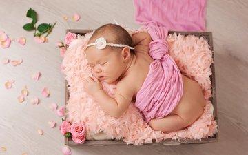цветы, розы, лепестки, сон, девочка, ткань, ребенок, младенец, ящик, малышка