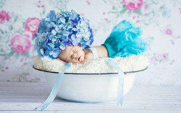 сон, дети, ребенок, младенец, гортензия, спящий, грудной ребёнок