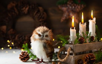 сова, снег, свечи, новый год, елка, хвоя, ветки, игрушка, птица, праздник, рождество, шишки, ящик, совенок, композиция