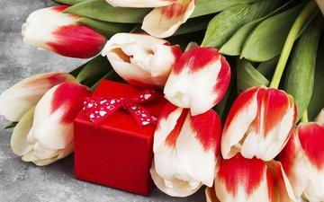 цветы, букет, тюльпаны, подарок, 8 марта