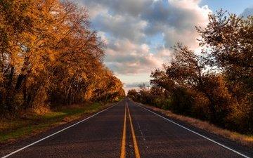 небо, дорога, облака, деревья, лес, осень, асфальт