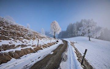 небо, дорога, деревья, снег, зима, ограждение