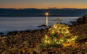 берег, елка, праздник