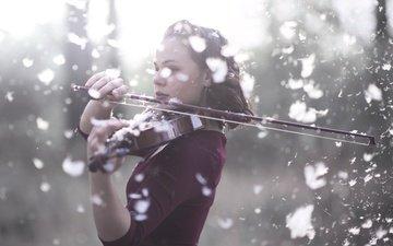 девушка, скрипка, музыка