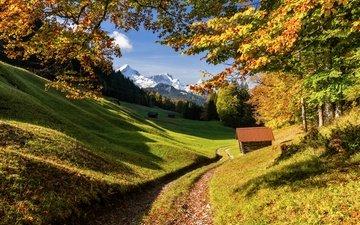 дорога, деревья, горы, лес, осень, германия, бавария
