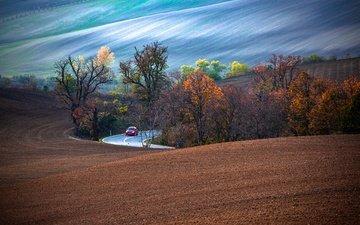 дорога, деревья, природа, пейзаж, машина, осень, автомобиль