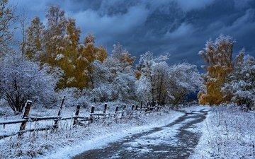 дорога, деревья, снег, осень, забор, казахстан