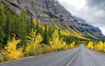дорога, горы, осень