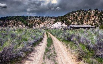 дорога, горы, природа
