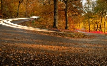 дорога, огни, осень