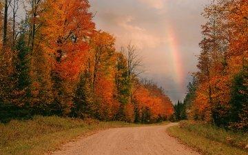 дорога, осень, радуга