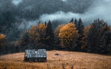 горы, осень, дом