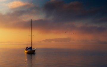 море, лодка, чайки