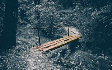 природа, лес, мост