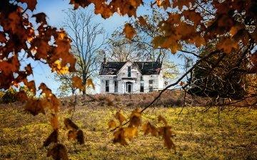 природа, осень, дом
