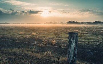 утро, туман, забор