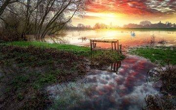 берег, закат, водоем, лебедь